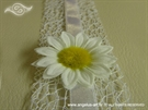 Invitations white daisy