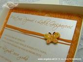 Ekskluzivna čestitka - Orange Butterfly