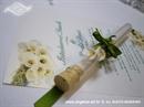 Pozivnica za vjenčanje Epruveta Bijela kala