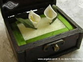 Jastučić za prstenje Škrinjica kale na zelenom